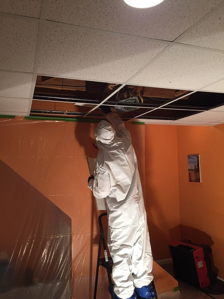 water damage cleanup in solon ohio